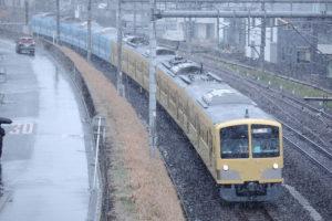 【雪景色】西武多摩川線へ向かう251F甲種輸送【2020/1/18】
